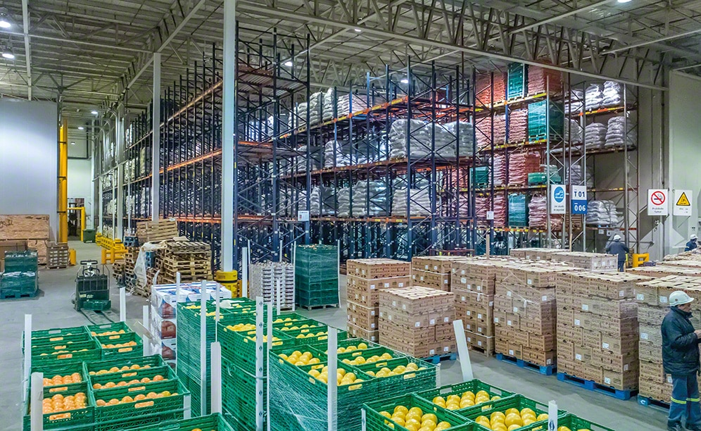 The fresh fruit warehouse of Coto in Nueve de Abril (Argentina)