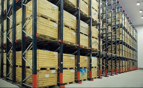 Mecalux has provided Alifrut with four blocks of drive-in pallet racking in its frozen storage chamber