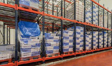 Live Pallet Racking (FIFO)